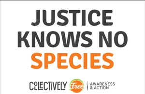 Justice-Knows-No-Species