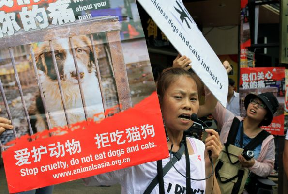 "Animal rights activists protest against eating dog meat outside a dog meat restaurants in Yulin, southwest China's Guangxi province on June 21, 2013. Yulin's annual ""dog meat festival"" starts on June 21, the Summer Solstice, amid intense criticism from animal rights groups, local media reported. CHINA OUT AFP PHOTO"