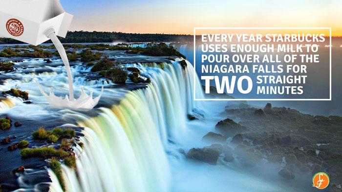 Pour-Milk-Niagaras